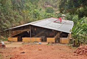 Cow Shed and Kitchen - Surabhivana