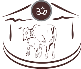 Save Indian Cows | Save Cows | Donate to Save Cows