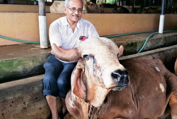 Veterinary Doctor Shri Manohar Upadhyay