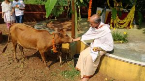 Cow Urine Cosmetics - Various uses of cow urine in beauty products.